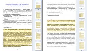 À gauche, le Livre blanc de la recherche médicale en odontologie (sept. 2005). À droite, la thèse de Christine Marchal-Sixou (déc. 2006). Colonnes à droite : miniatures des pages similaires (surlignages en jaune des textes plagiés).